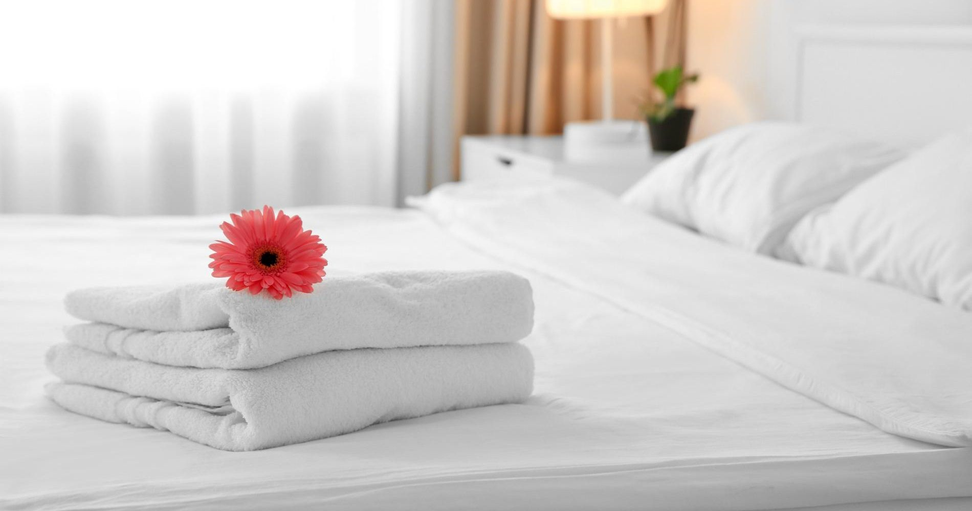 Flower on stack of towels in light hotel room